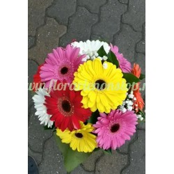 Comanda flori non stop 11 gerbera  livrare cluj napoca