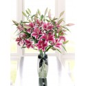 7 crini imperiali roz livrare la domiciliu