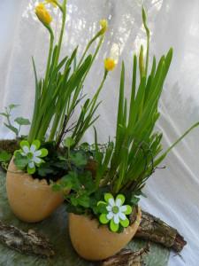 aranjament-floral-plante-naturale-paste-livrare-flori-la-domiciliu-cluj