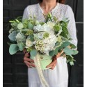 Cutie Magic White Flowers