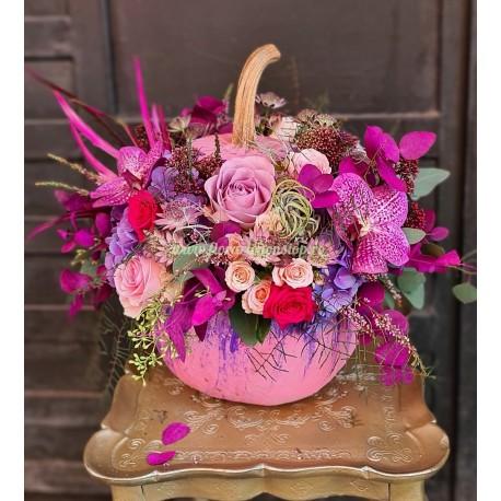 Dovleac cu flori Pink Autumn